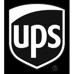VDO UPS Express CIF Shipment